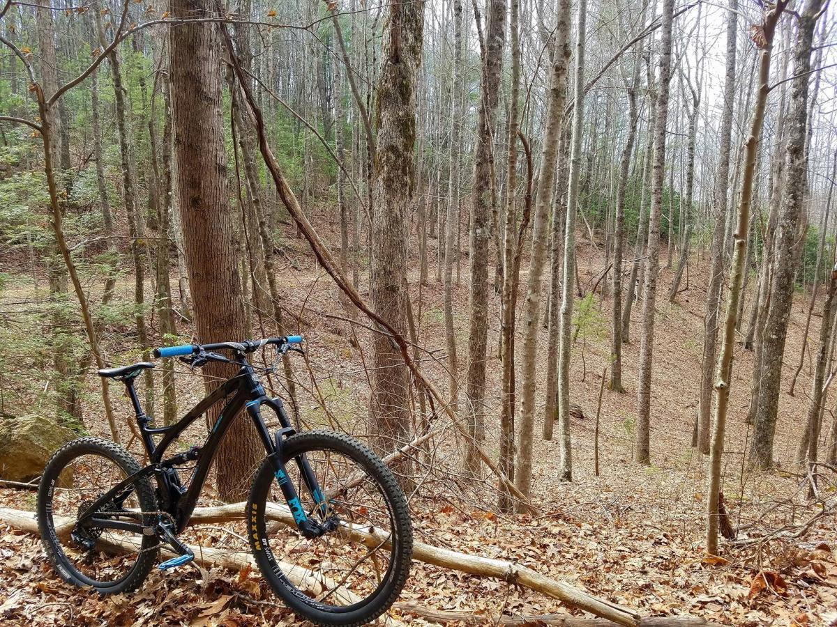 Dupont State Forest Mountain Bike Trail in Brevard, North Carolina on