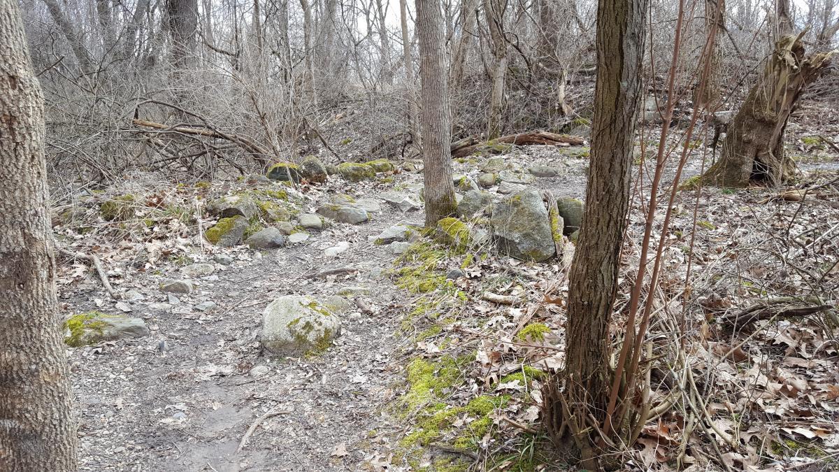 Potato Creek State Park