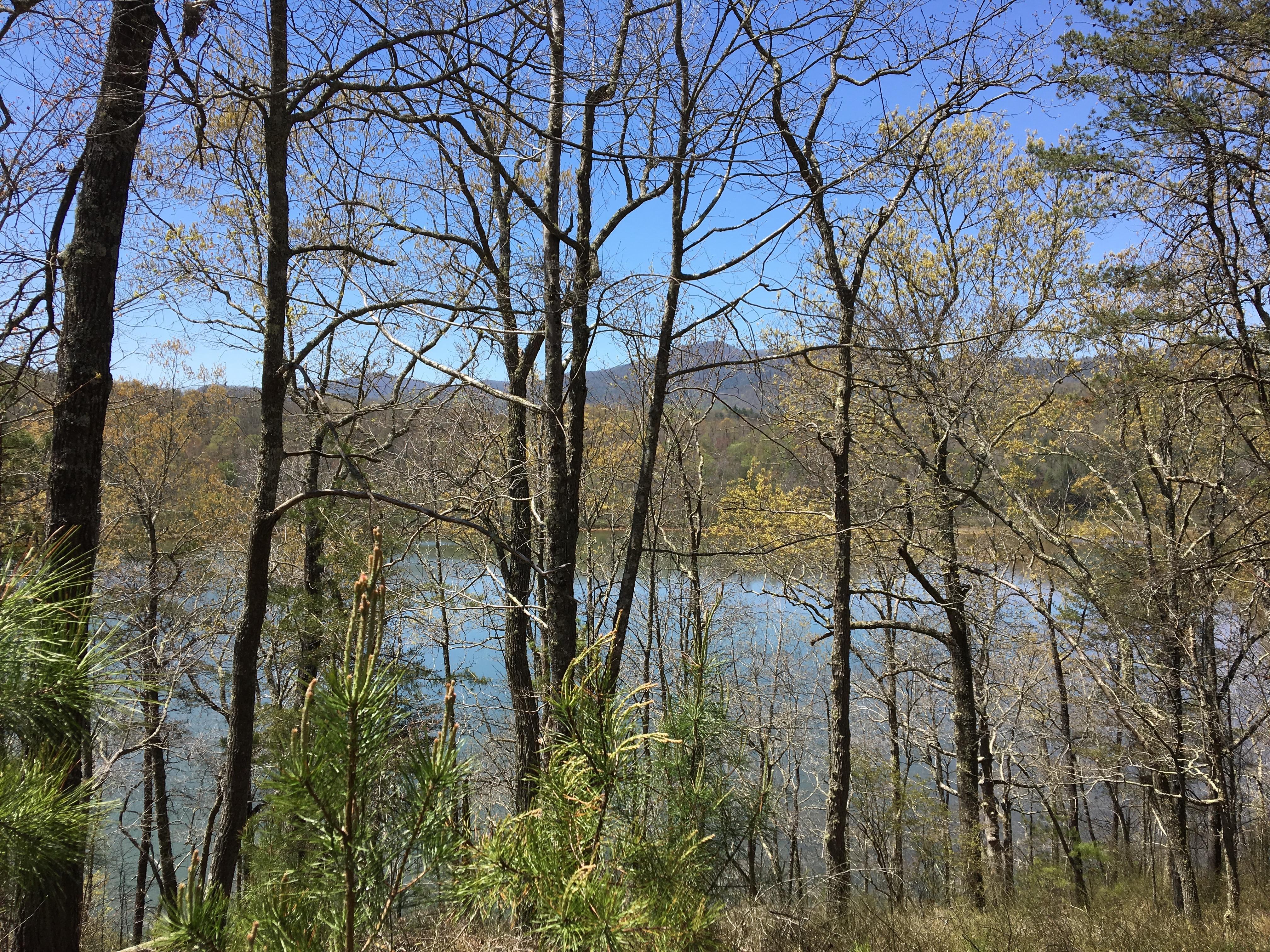 brush creek gay singles Brush creek is a singletrack mountain bike trail in ocoee, tennessee view maps, videos, photos, and reviews of brush creek bike trail in ocoee.