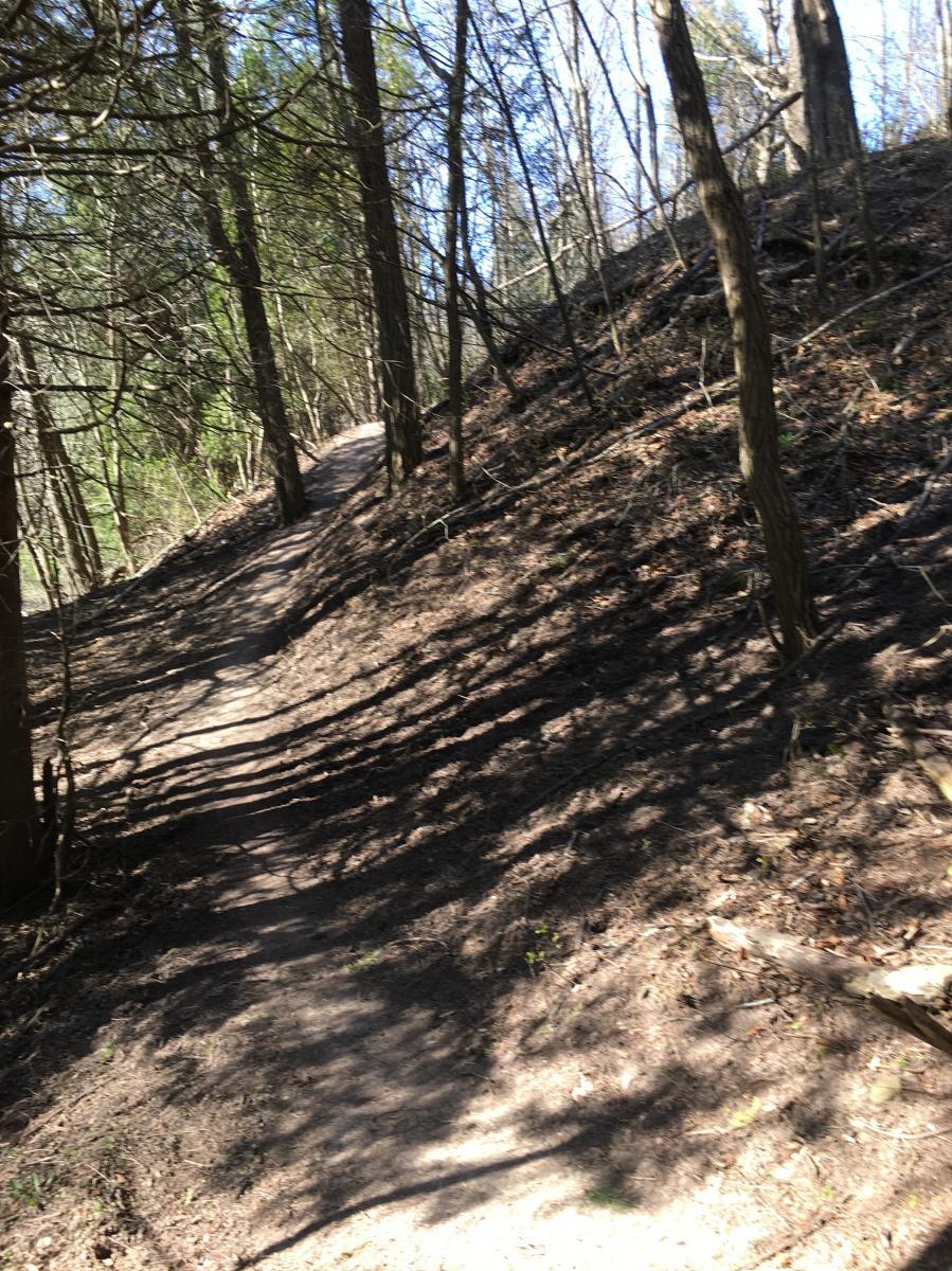 Upper Lake Trail
