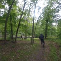 Smedley Park Mountain Bike Trail In Springfield Pennsylvania Singletracks Com