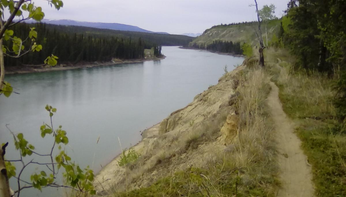 Easy Money, Girlfriend, Juicy, Yukon River Tr.