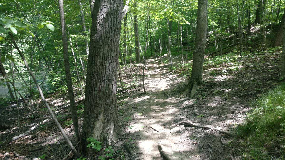 River Bends Mountain Bike Trail