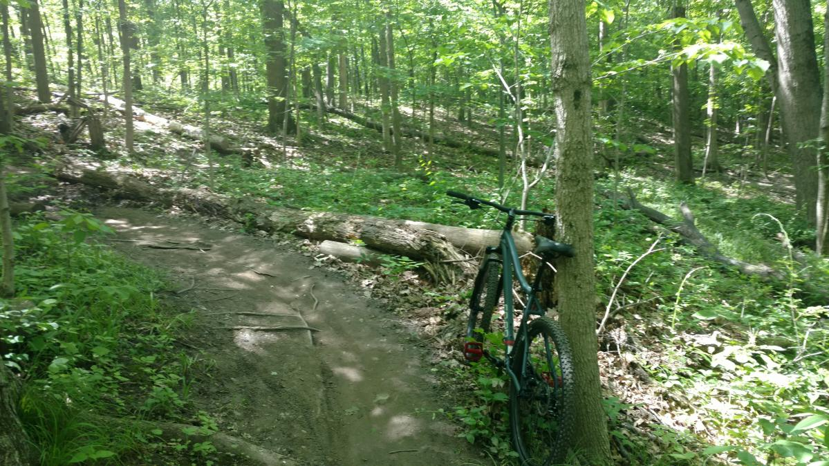 River Bends Mountain Bike Trail