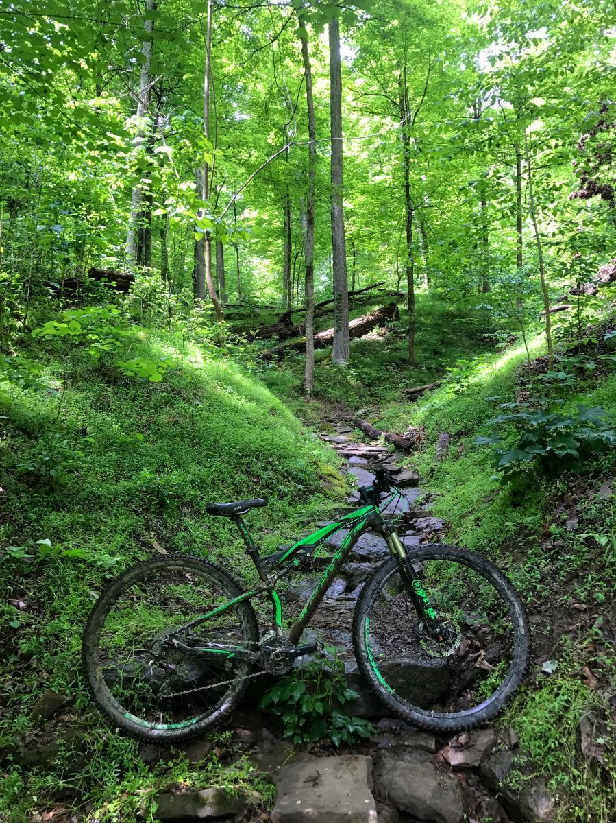 PCP Trails