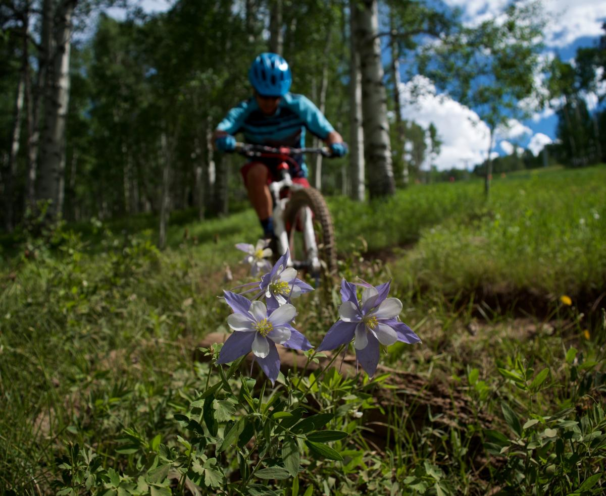 Vail Mountain Bike Park