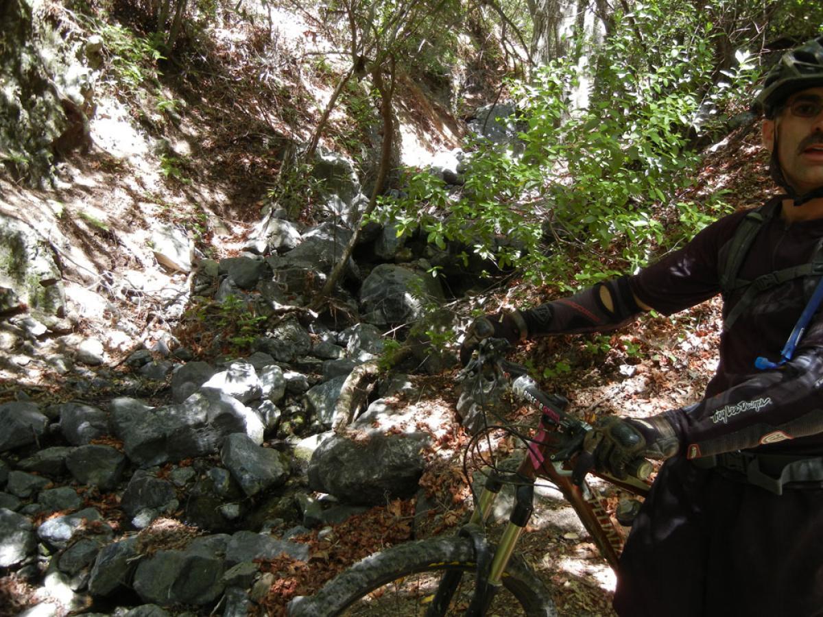 Joplin Trail