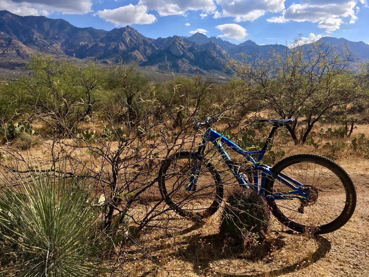 50-year Trail / Golder Ranch
