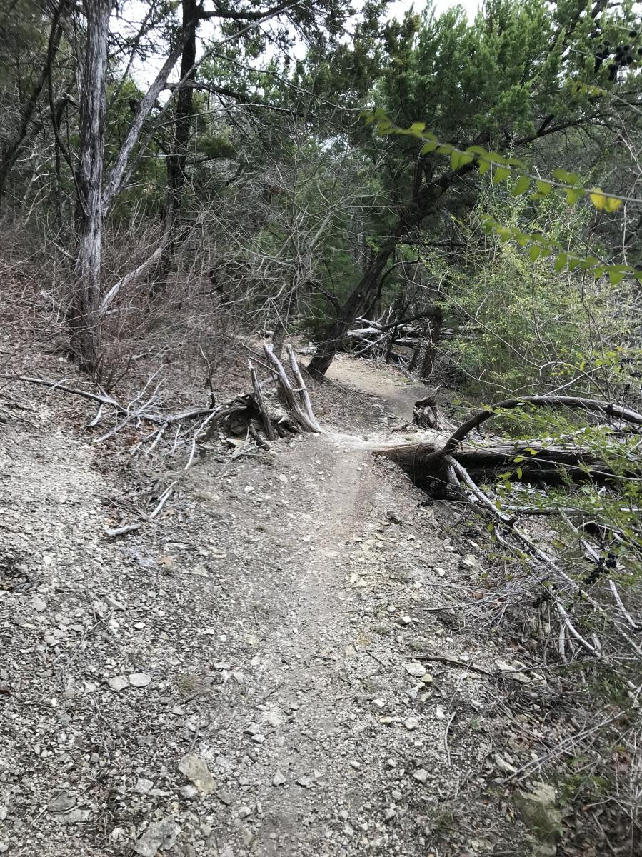 Big Cedar Wilderness Trails