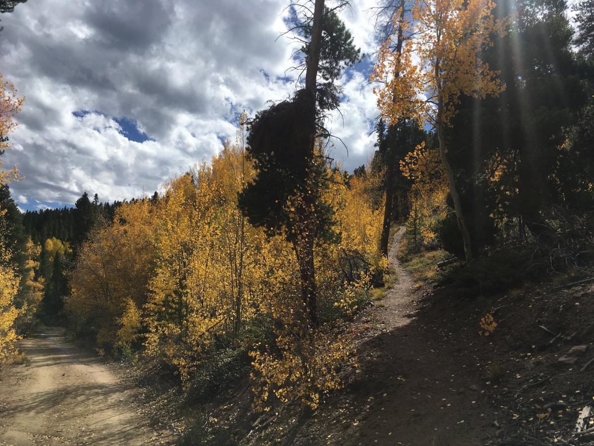 Colorado Trail: Clear Creek Thd to Lake View CG / Hwy 82