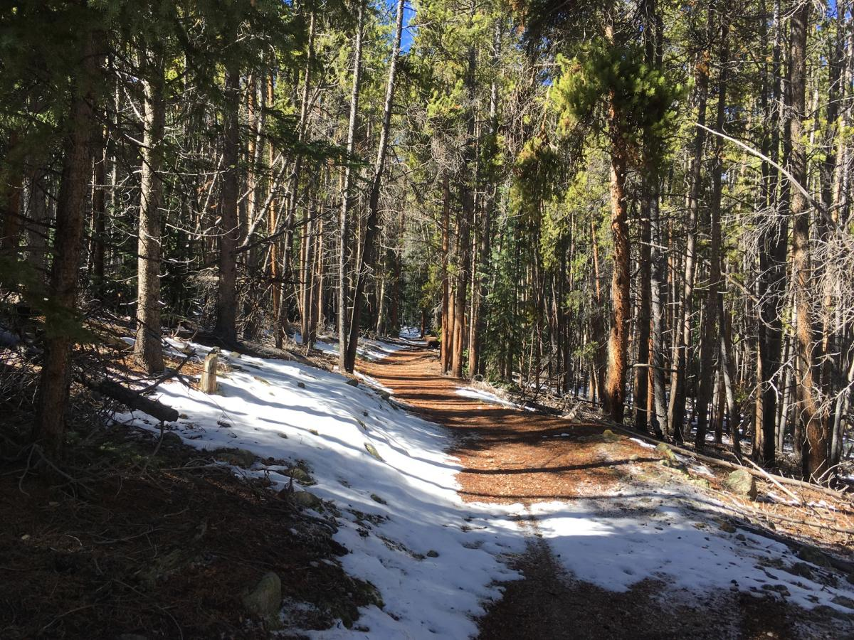 Colorado Trail: Twin Lakes / Hwy 82 to Half Moon Rd / Mount Massive Wilderness
