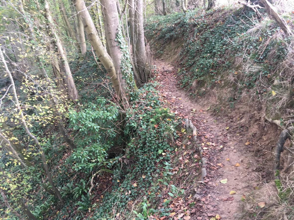 GR126 Ridgetop Section