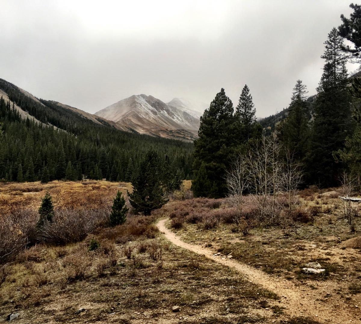 Colorado Trail: North Cottonwood to Collegiate Peaks Wilderness