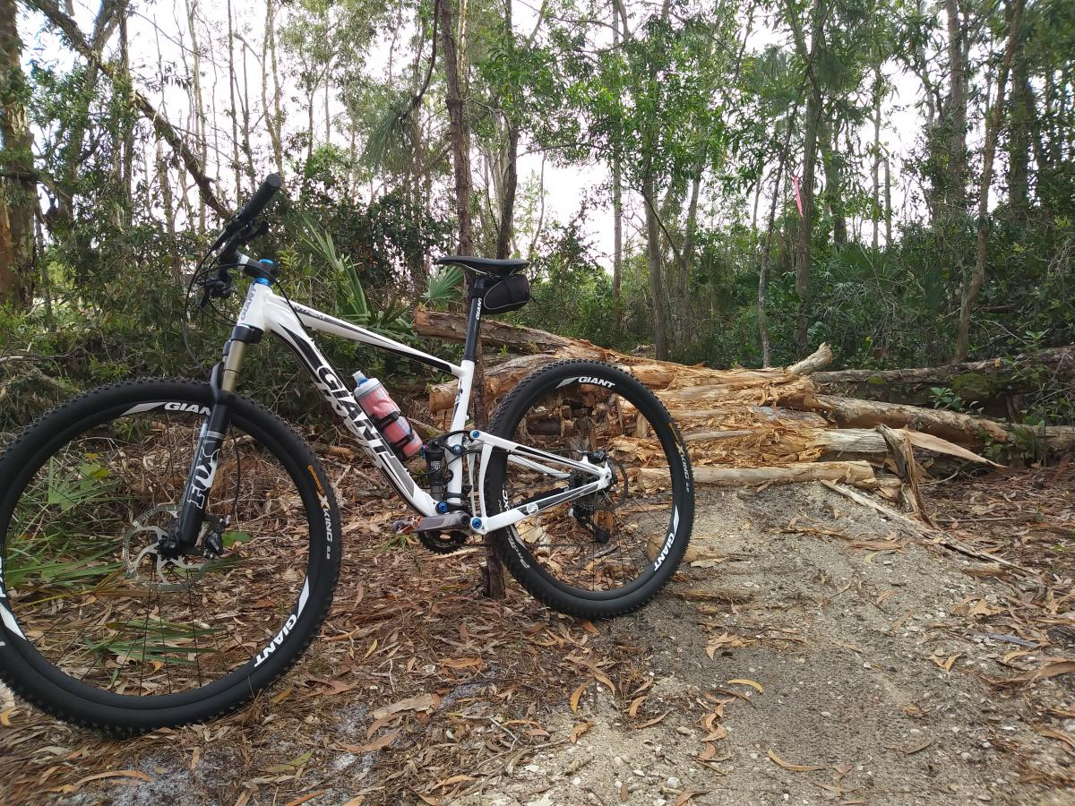 Okeeheelee Park / Pinehurst / Green Acres Freedom Park