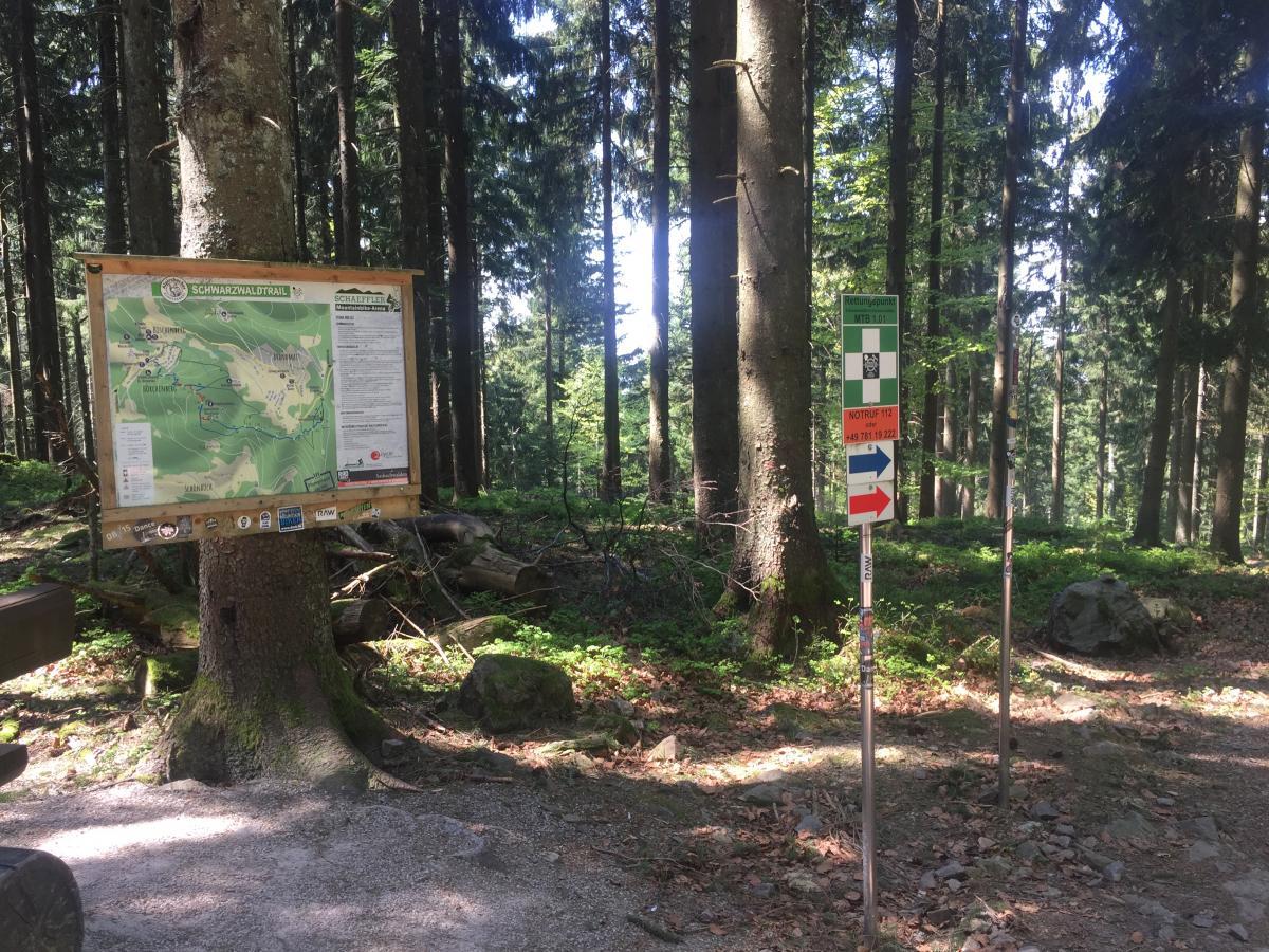 Alpirsbacher Schwarzwald Trail