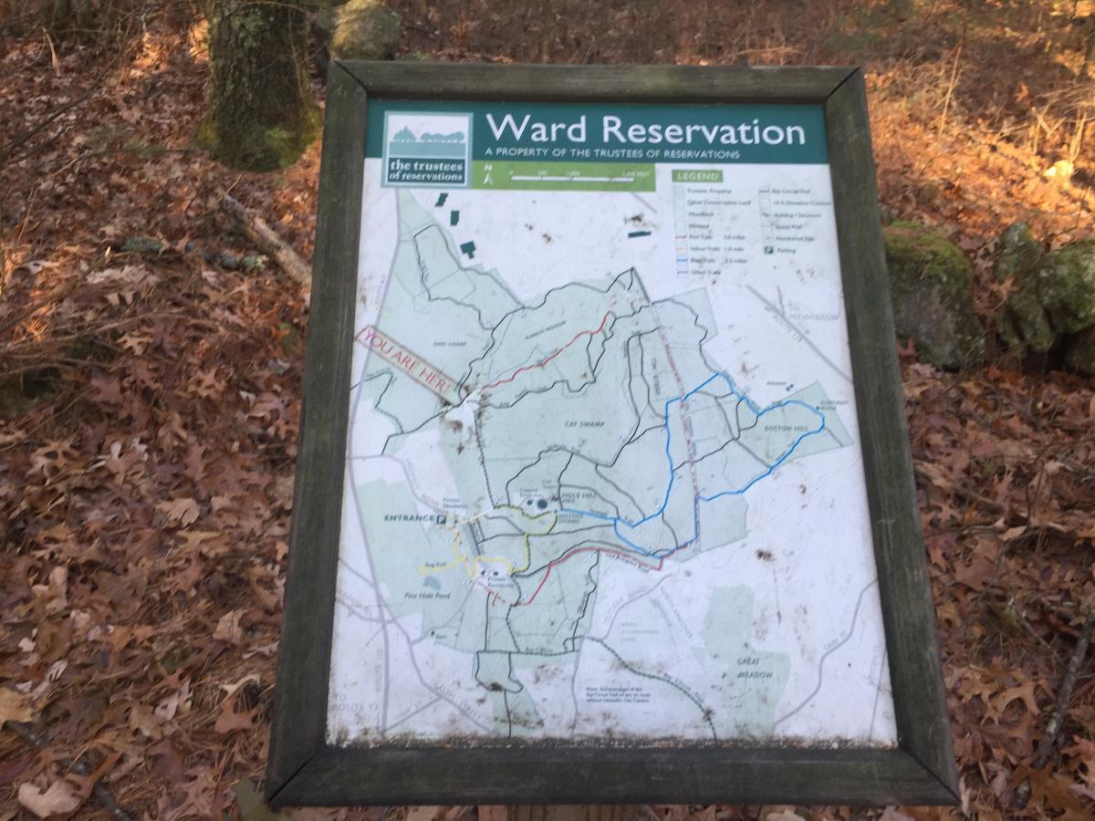 Ward Reservation