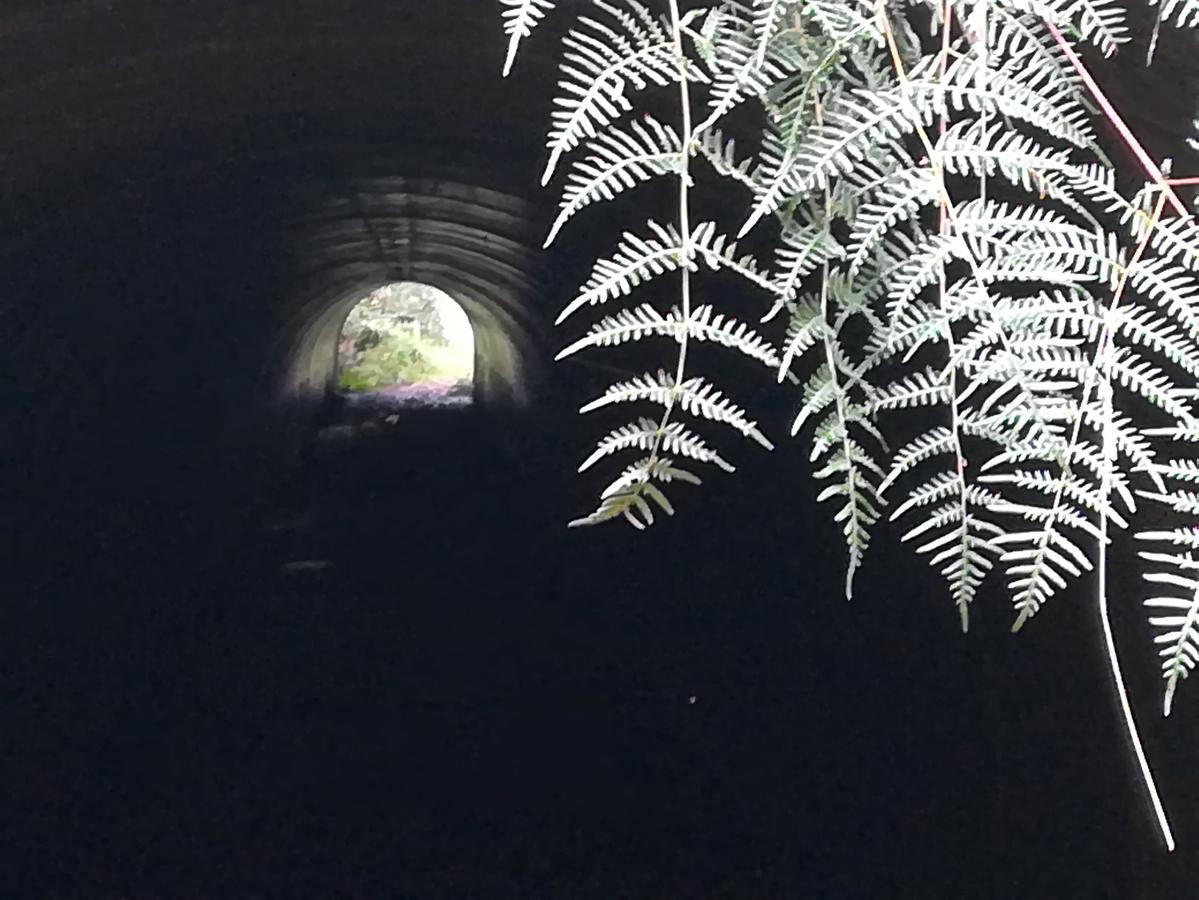 Huka Falls to Craters MTB Park