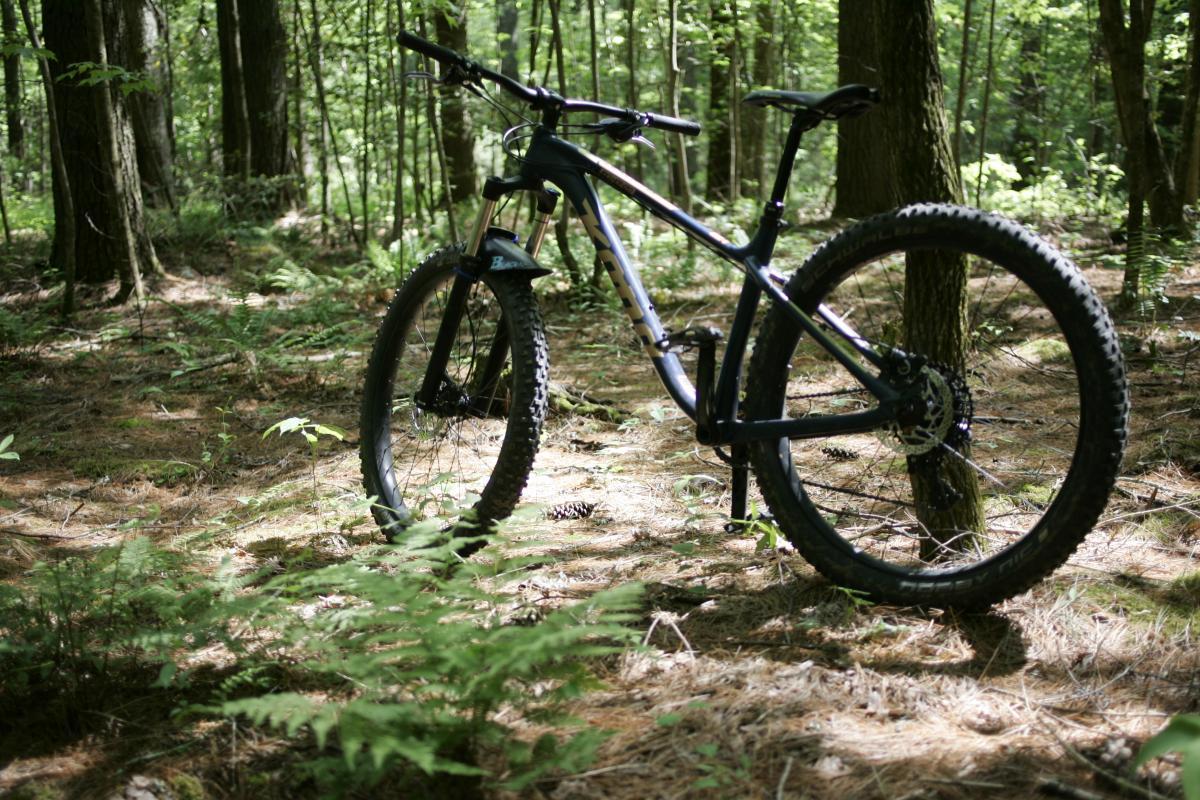 Isaac Heath Trail #40
