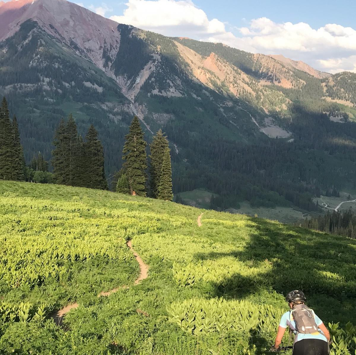 Trail 403 / Washington Gulch