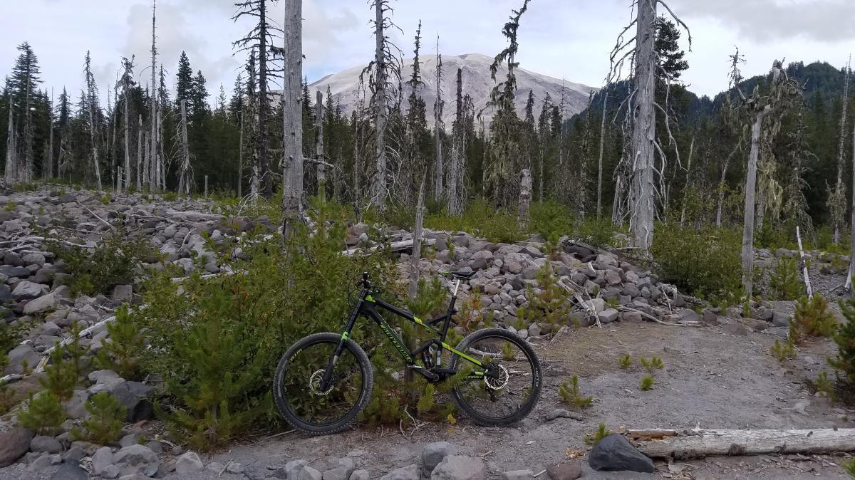 Toutle Trail #238