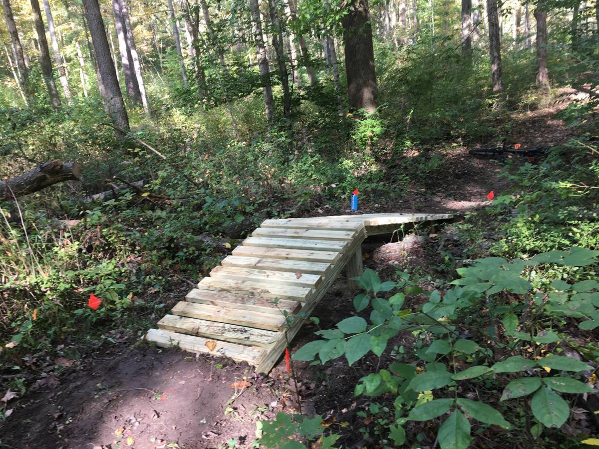 Hayes Mountain Bike Trails