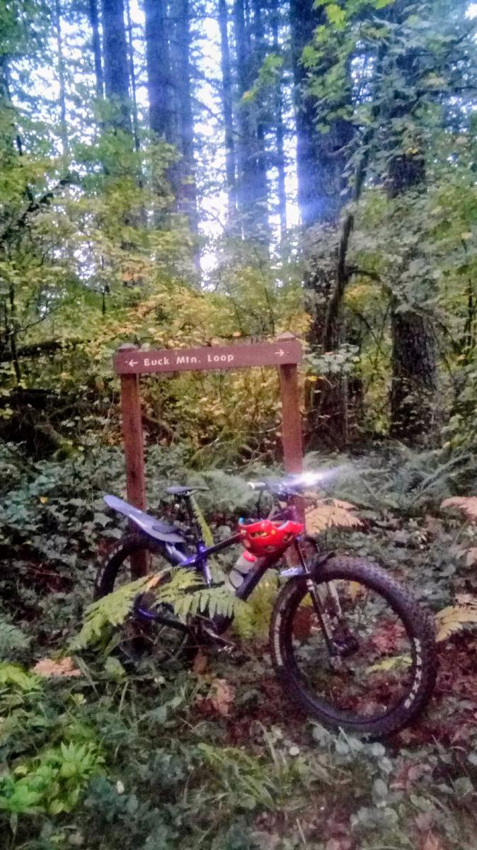Catamount Trail Mountain Bike Trail in Silverton, Oregon ... on