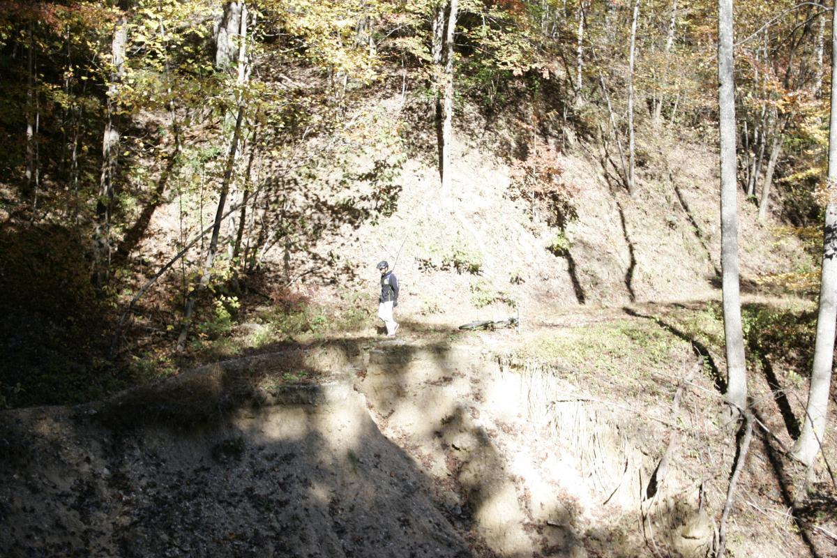 Jarrett Creek Road