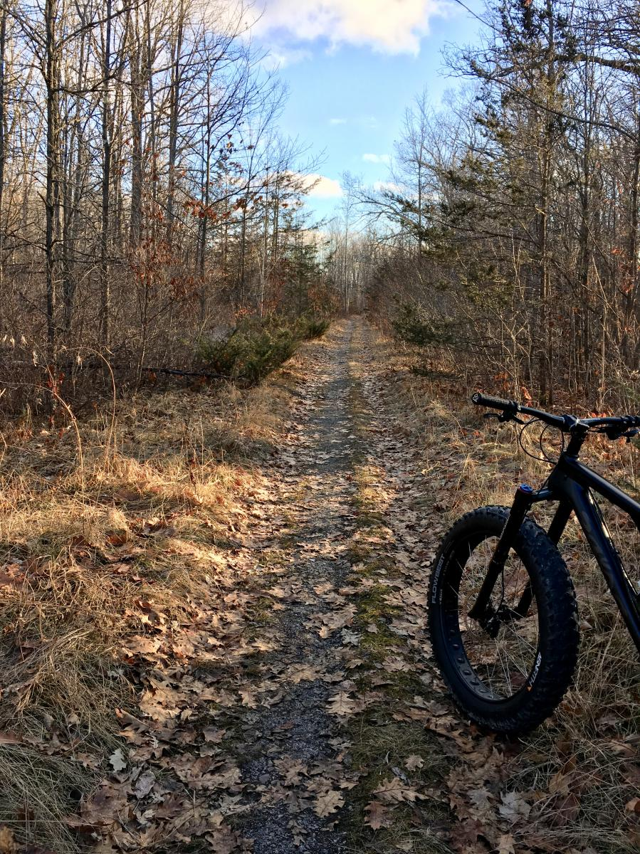 Batawa Trails