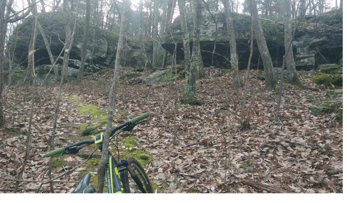 Round Top MTB Trails