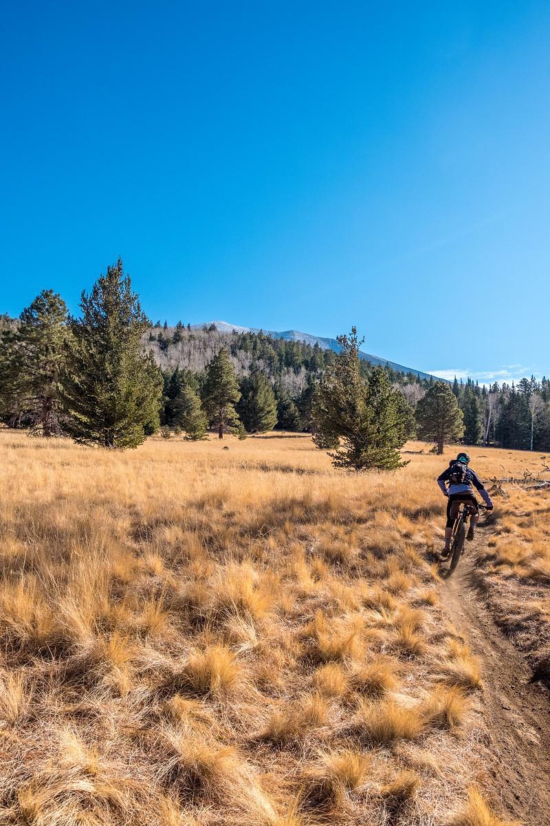 Arizona Trail Passage #34 San Francisco Peaks