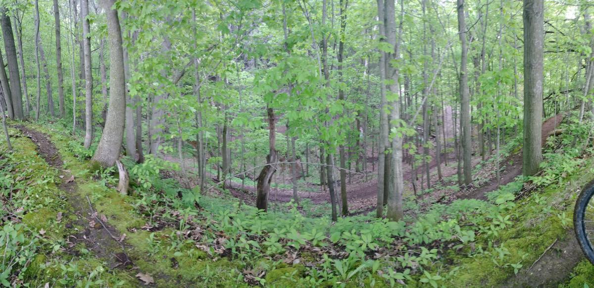 Riverview Park MTB Trail