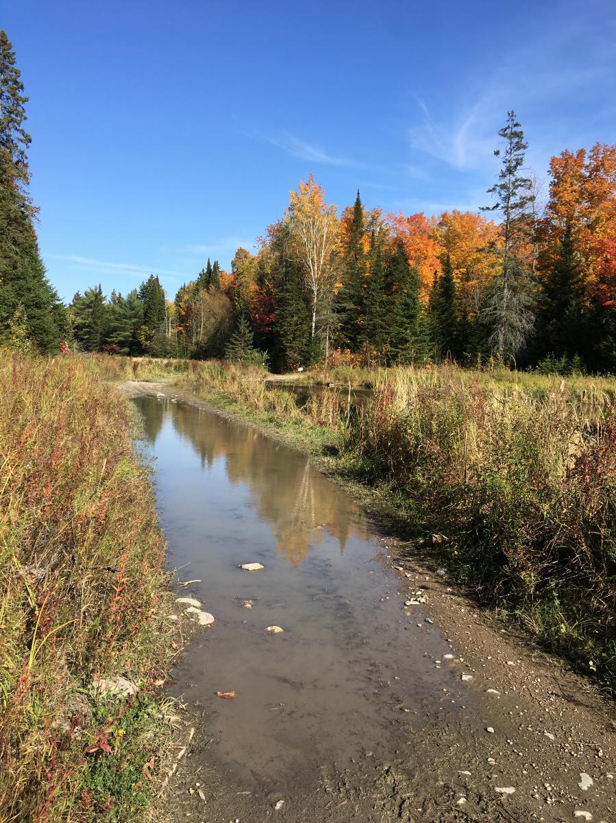Ottawa River Corridor Trails
