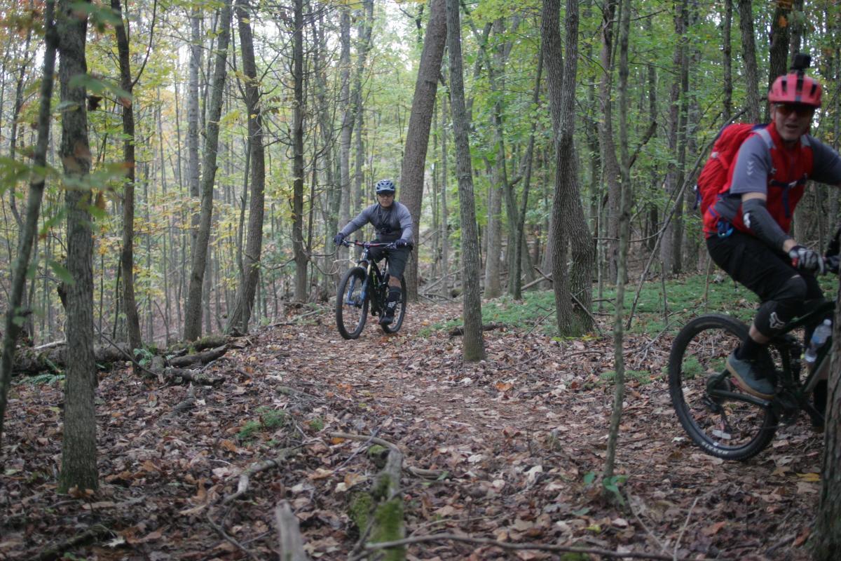 Mountain Laurel Trails
