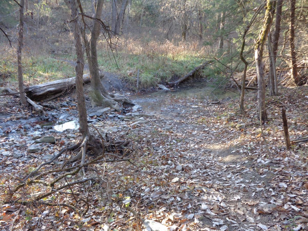 Big Bull Creek