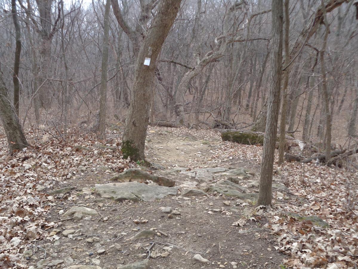 Perry Lake Bike Trail