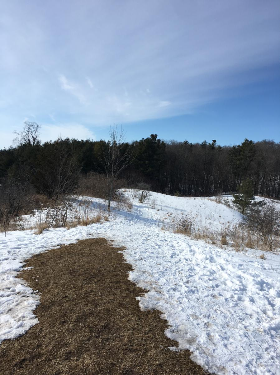 Dryden Tract