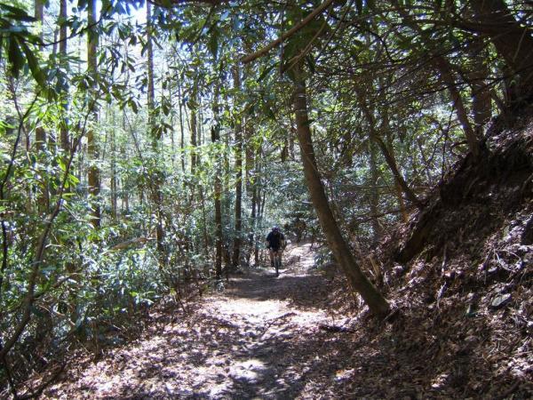 Bear Creek Trail Jpg Singletracks Mountain Bike News