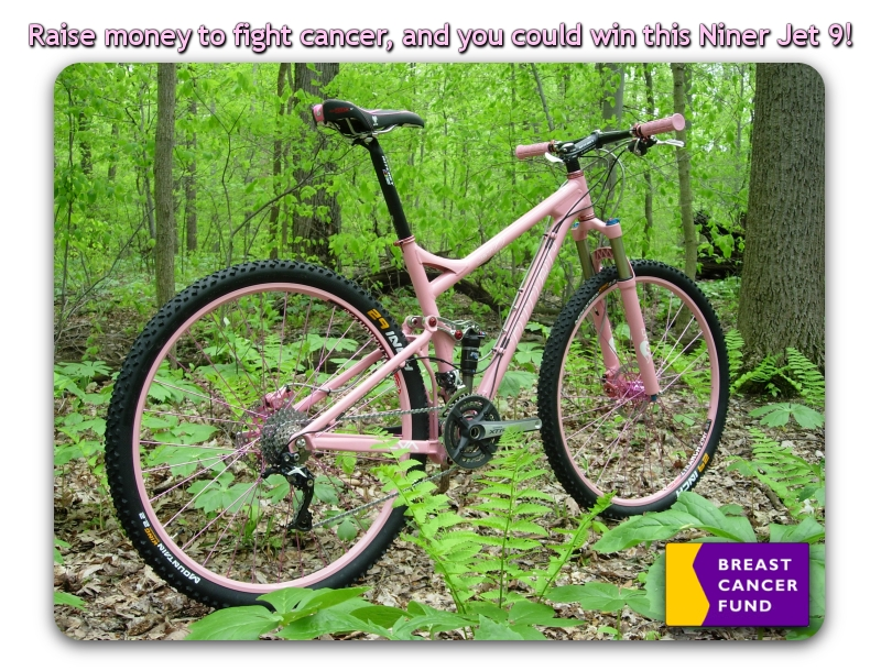 pink bike raffle to benefit breast cancer fund