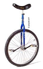 mtb-unicycle.jpg