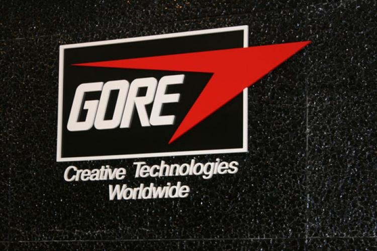 an introduction to the company w l gore and associates The wl gore & associates, inc is a ptfe - processing company it was founded in 1958 in a garage of bill gore the founder worked in the research department of the chemical company employees are associates, so partners executives are elected for the period of a project from the project staff.