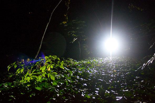 seca-light