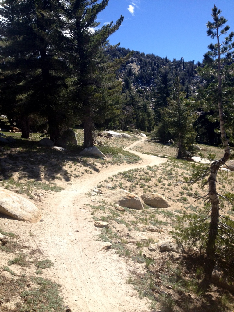 Slt Reviews >> Mountain Biking the Tahoe Rim and Flume Trails - Singletracks Mountain Bike News