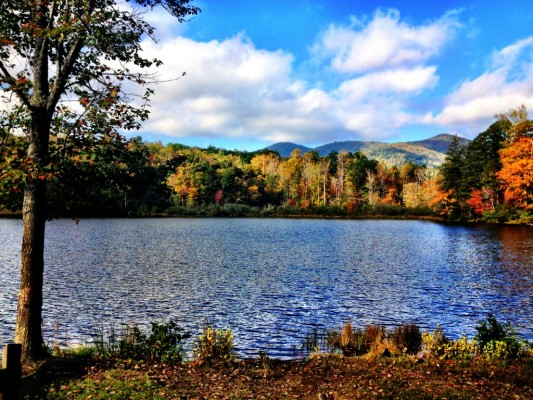 View of the colorful mountains behind Lake Powhatan. There's tons of singletrack hidden beneath those colorful leaves!