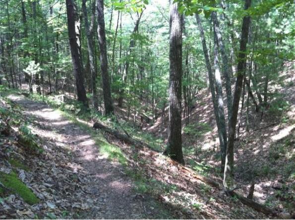 Trail: The Southern Traverse. Photo: GoKite5.