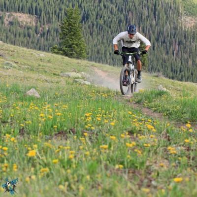 Weekly Wander Colorado Trail 4x4