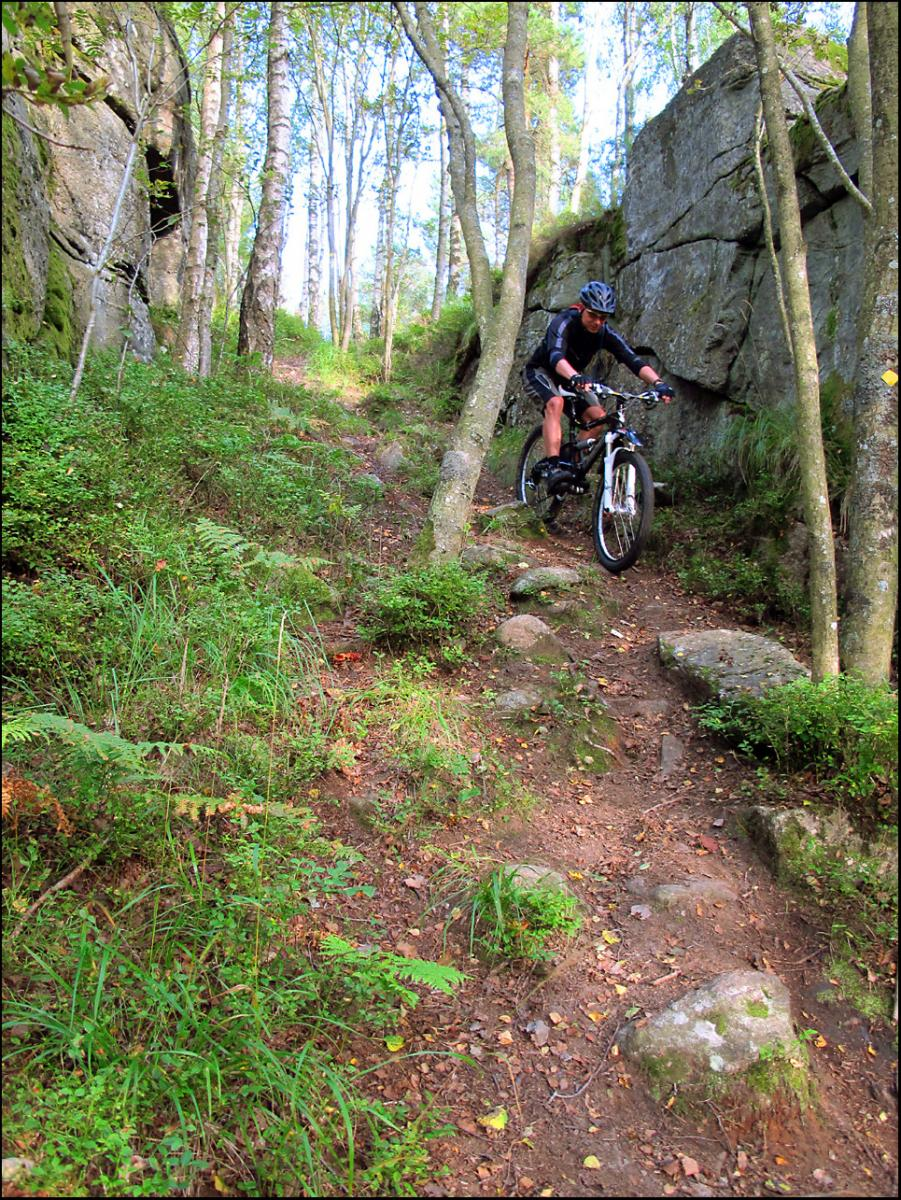 Mountain Bike Trails Sweden