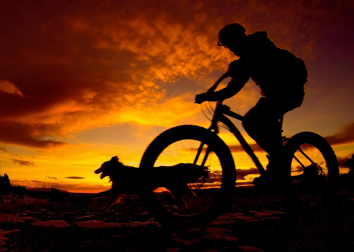 Bob and Tula enjoying the sunset at the Dog Town Trails, Santa Fe, NM Photo: scottsdalemountainbiker