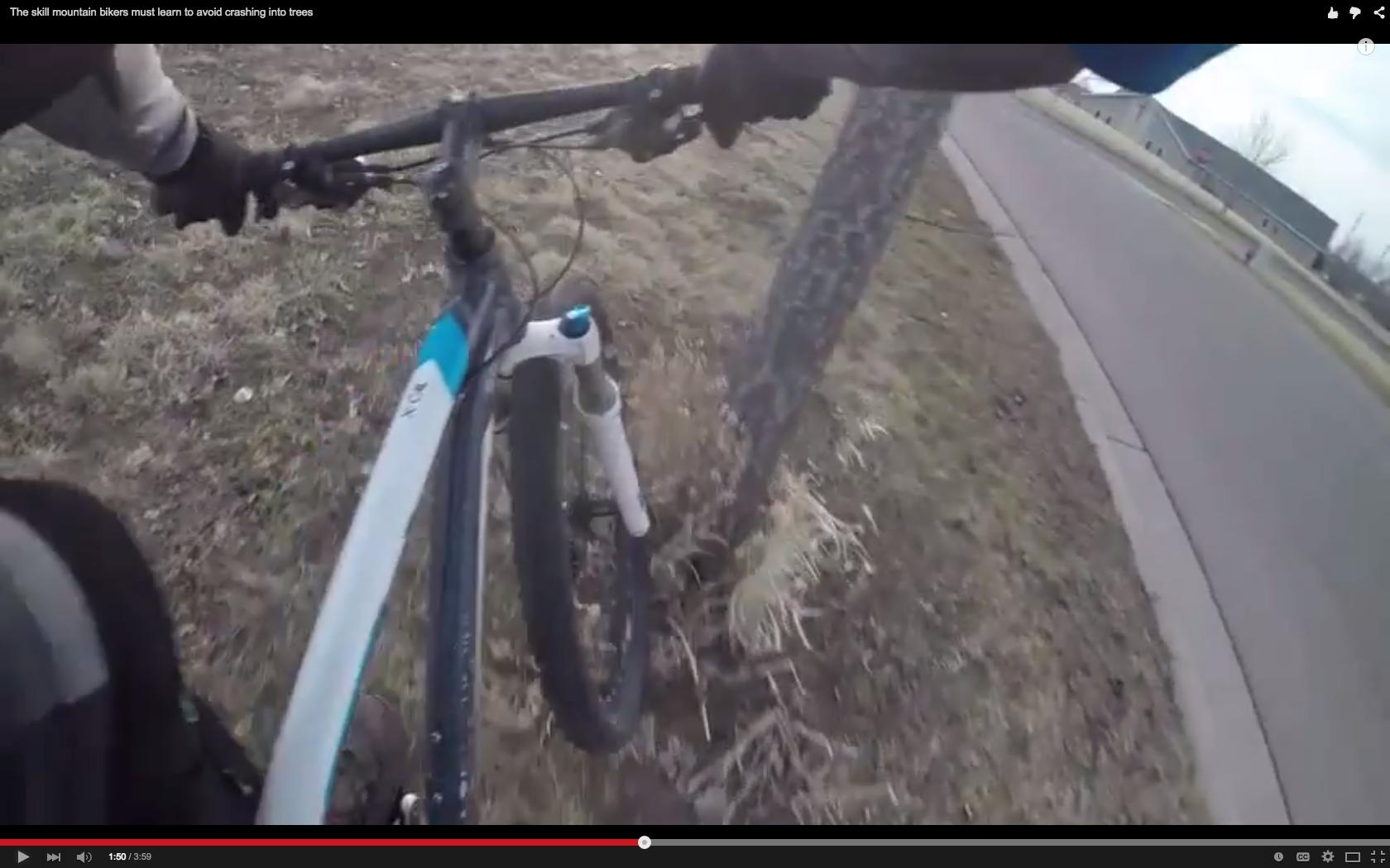 Screen Cast Video: The Skill Mountain Bikers Must Learn to Avoid Crashing into Trees - Singletracks Mountain Bike News