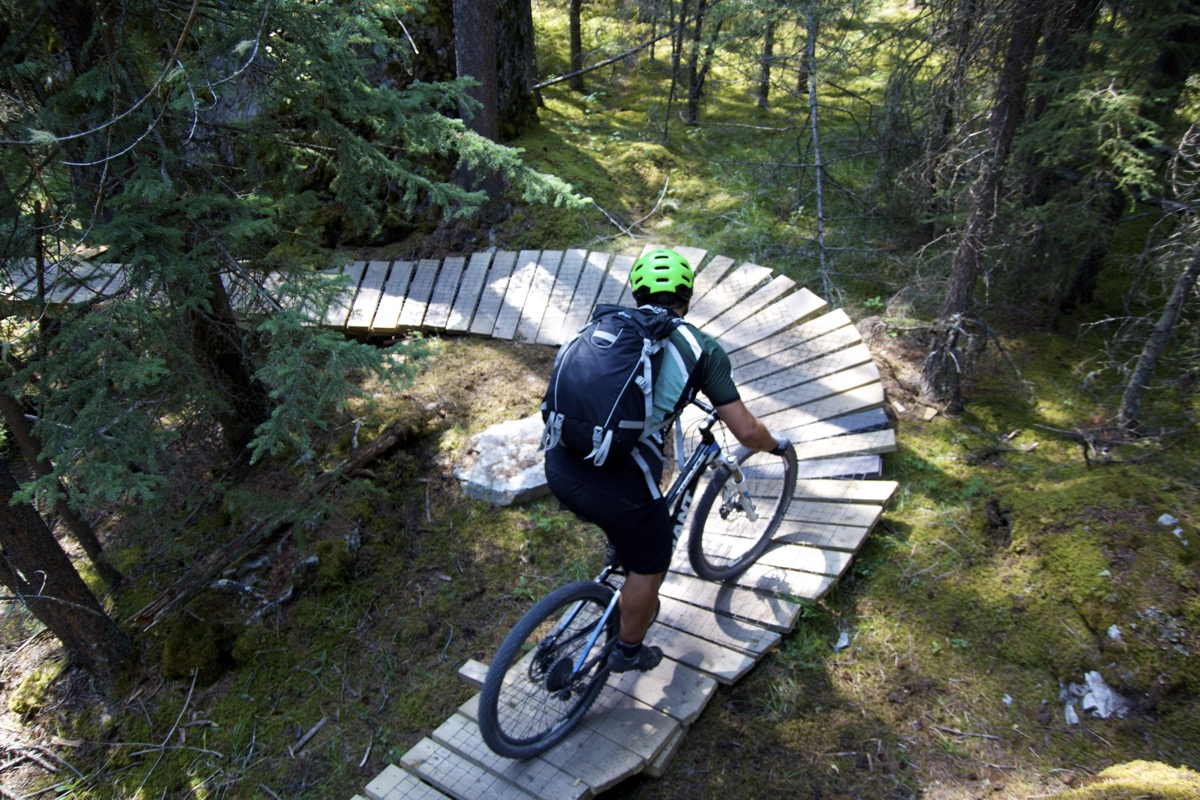 Mountain Biking cover image