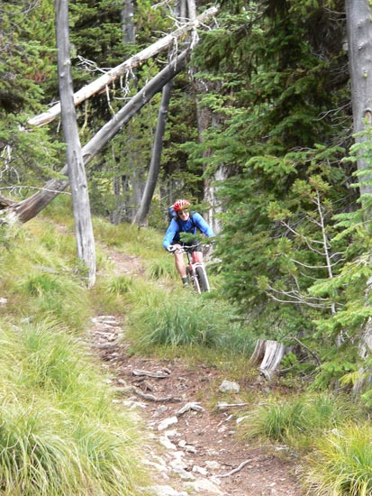 Advocacy Alert: Petition for Access to Wilderness Study Areas - Singletracks Mountain Bike News